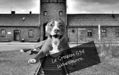 Le Stream 534 – Woufchwitz