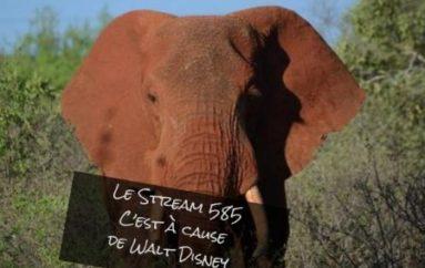 Le Stream 585 – C'est à cause de Walt Disney