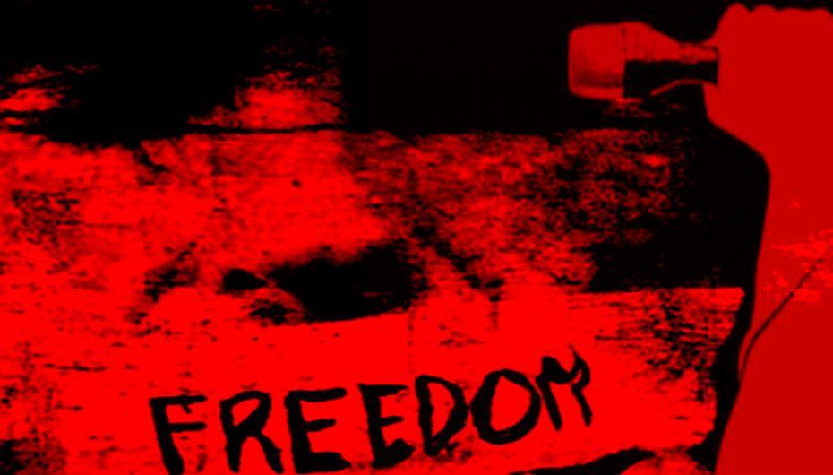 EDDNP #313 – Liberté Sans Sens Sûr!