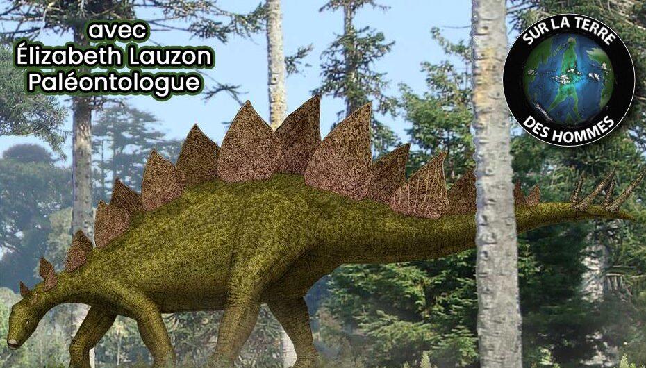 SLTDH – S06 – EP05: Le stégosaure avec Élisabeth Lauzon